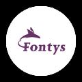 Fontys logo